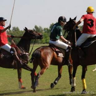 Polo Incentive mit Thomas Winter