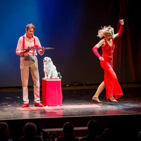 Comedy Hunde Theater