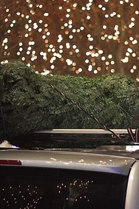 Schlagen Sie Ihren Weihnachtsbaum zur Weihnachtsfeier
