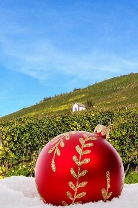 Weihnachtsfeier in der Region Hunsrück - Mosel - Rhein
