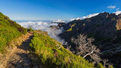 Incentive Reise Portugal Madeira Berge