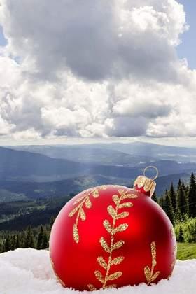Weihnachtsfeier im Bayerischen Wald